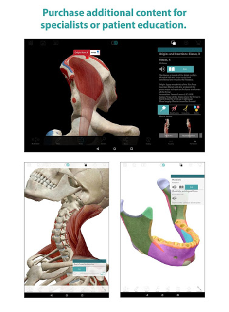Human Anatomy Atlas screenshot 15