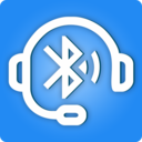 Icon for Bluetooth Streamer Pro: Stream Without Accessories