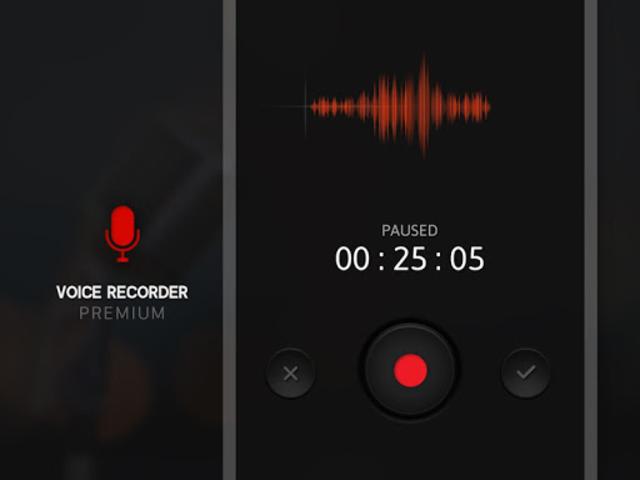 Voice Recorder - Premium screenshot 1