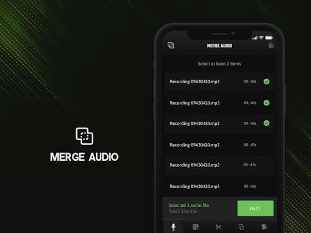 Voice Recorder - Premium screenshot 3