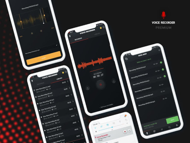 Voice Recorder - Premium screenshot 5
