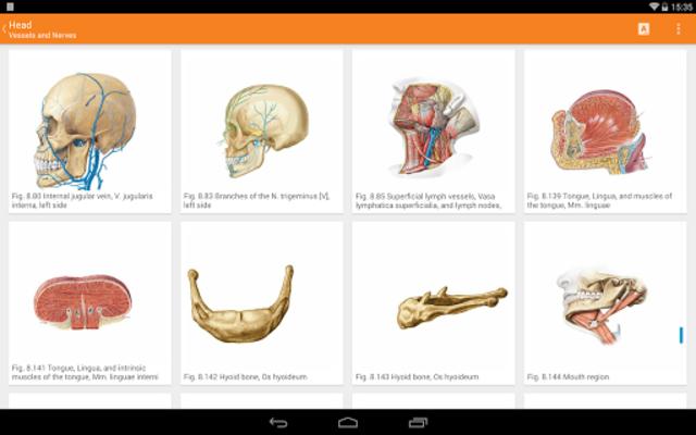 Sobotta Anatomy screenshot 10