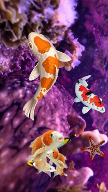 About Koi Fish Wallpaper 3d Water Fish Screensaver 3d Google Play Version Koi Fish Wallpaper 3d Google Play Apptopia
