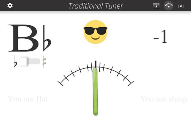 Bandmate Chromatic Tuner Pro screenshot 7