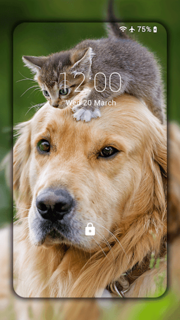 Cats and Dogs Live Wallpaper (Backgrounds) screenshot 2