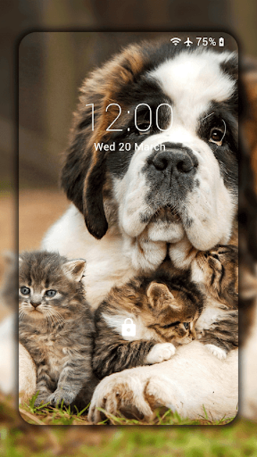 Cats and Dogs Live Wallpaper (Backgrounds) screenshot 3