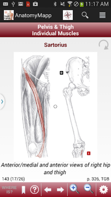 AnatomyMapp screenshot 4