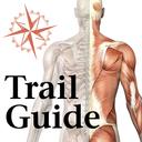 Icon for AnatomyMapp