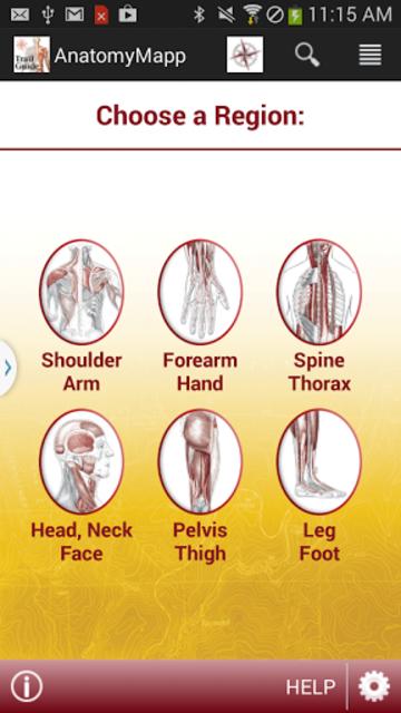 AnatomyMapp screenshot 1