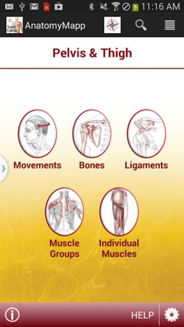 AnatomyMapp screenshot 2