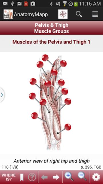AnatomyMapp screenshot 3