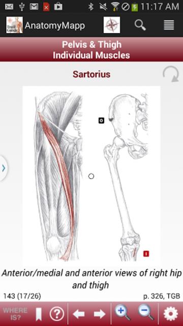 AnatomyMapp screenshot 4