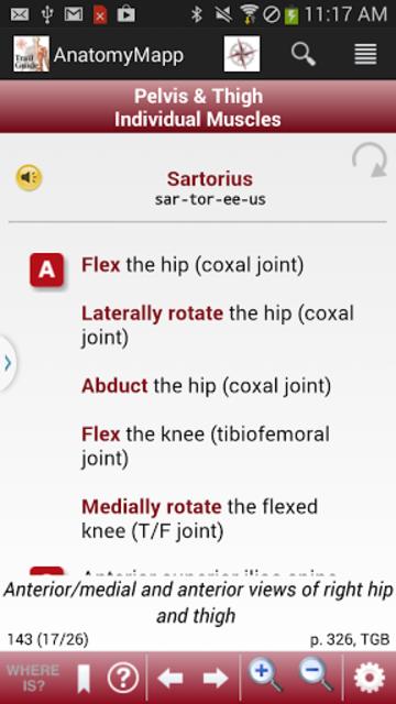 AnatomyMapp screenshot 5