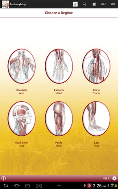 AnatomyMapp screenshot 6