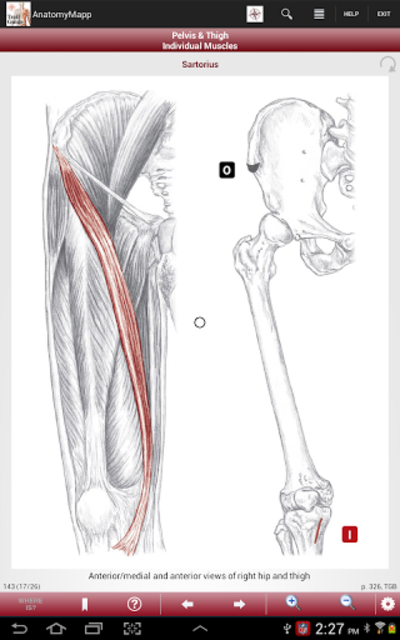 AnatomyMapp screenshot 9