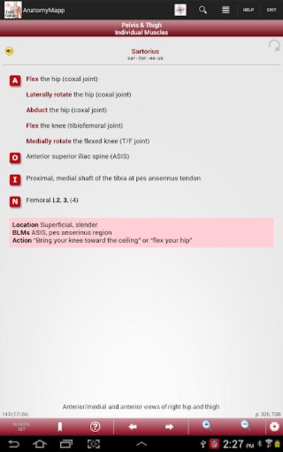 AnatomyMapp screenshot 10