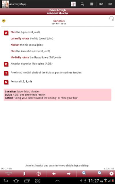 AnatomyMapp screenshot 15