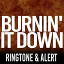 Icon for Burnin It Down Ringtone