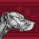 Icon for Canine AcuPoints