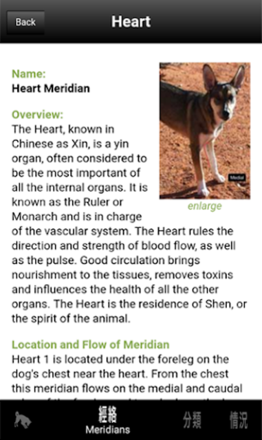 Canine AcuPoints screenshot 2