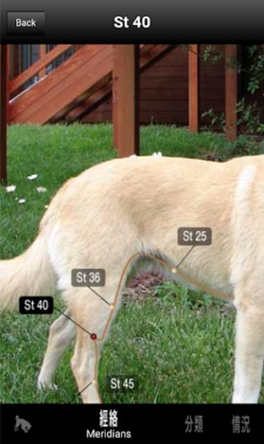 Canine AcuPoints screenshot 3