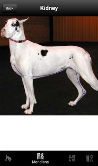 Canine AcuPoints screenshot 5