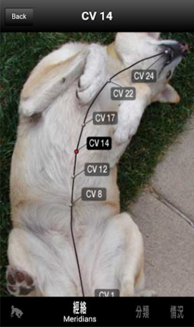 Canine AcuPoints screenshot 6
