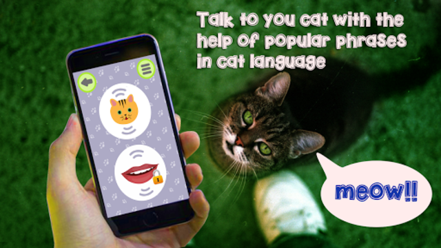 Cat Language Translator Simulator - Talk to Pet screenshot 2