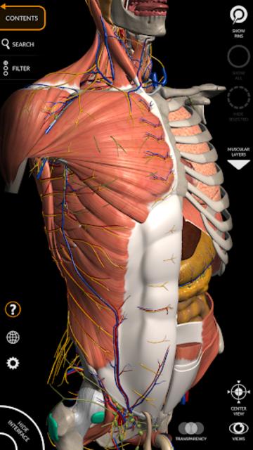Anatomy 3D Atlas screenshot 1