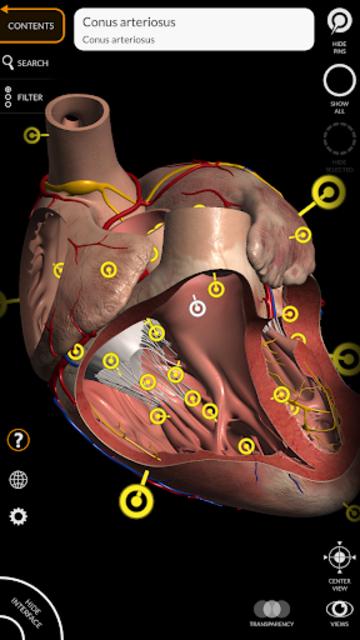 Anatomy 3D Atlas screenshot 4
