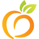 Icon for Peach State Health Plan