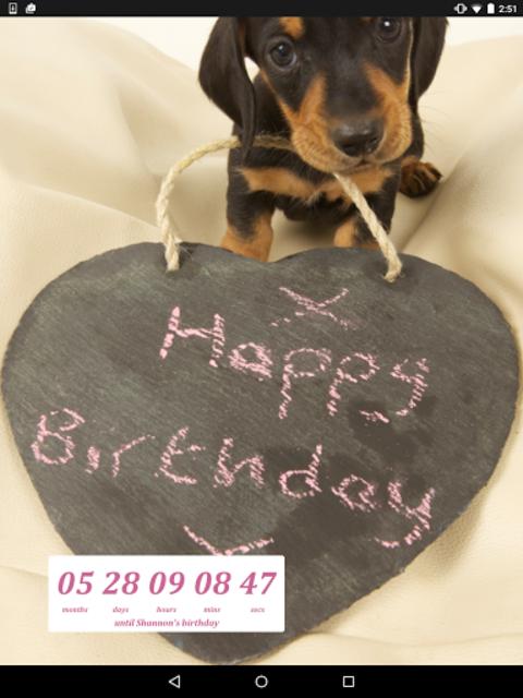 Birthday Countdown Widget screenshot 2