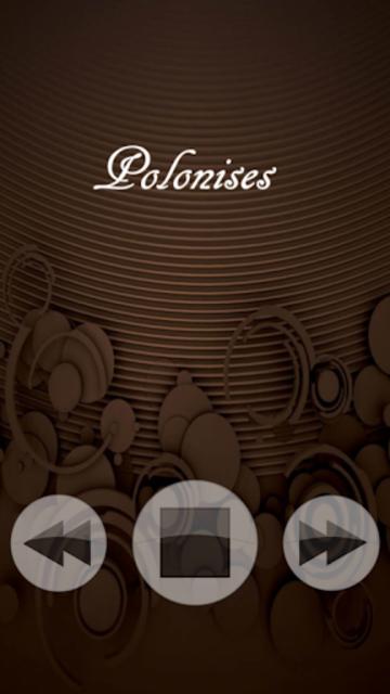 Chopin Classical Music screenshot 4