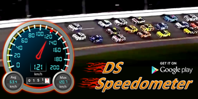 DS Speedometer & Odometer screenshot 9