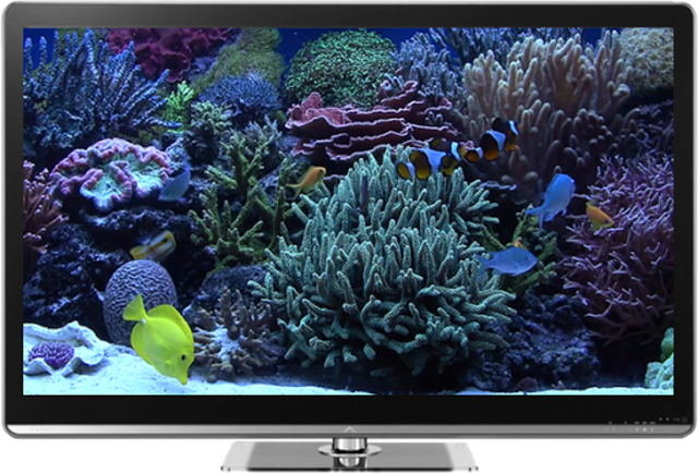 Aquariums on TV via Chromecast screenshot 1