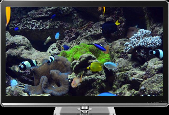 Aquariums on TV via Chromecast screenshot 2