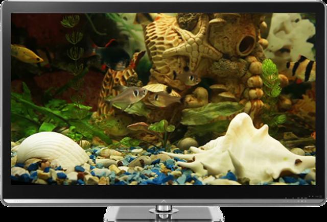 Fish Tank on TV via Chromecast screenshot 2