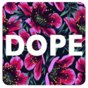 Icon for Dope Wallpapers MX