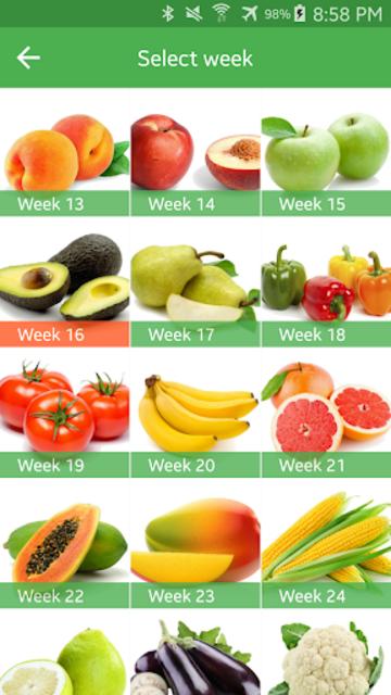 Pregnancy Week By Week screenshot 7