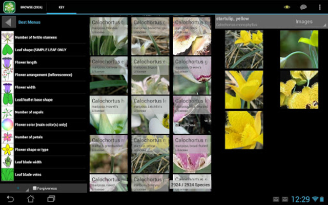 Central West California Plants screenshot 7