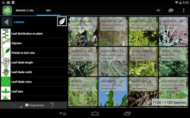 Central West California Plants screenshot 10