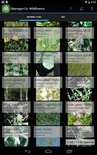 Central West California Plants screenshot 8