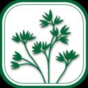 Icon for Oregon Plants
