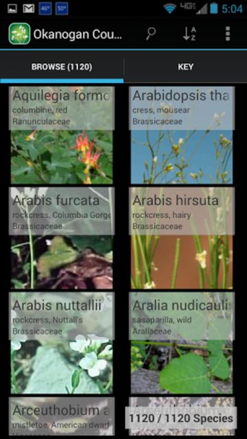 2250 Colorado Wildflowers screenshot 1