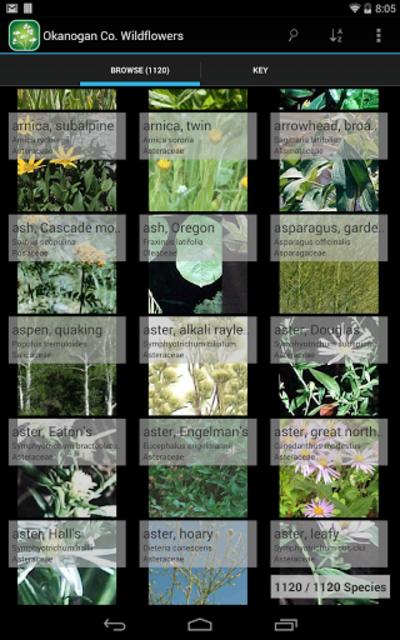 2250 Colorado Wildflowers screenshot 7