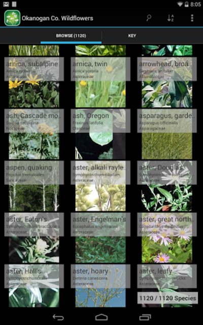 3250 Great Plains Wildflowers screenshot 7