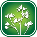 Icon for 3250 Great Plains Wildflowers