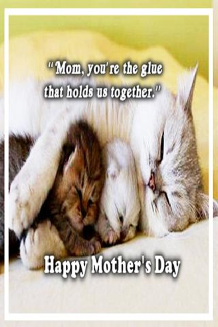 Happy Mother's Day Greetings screenshot 3