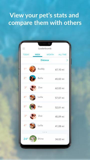 Findster screenshot 7