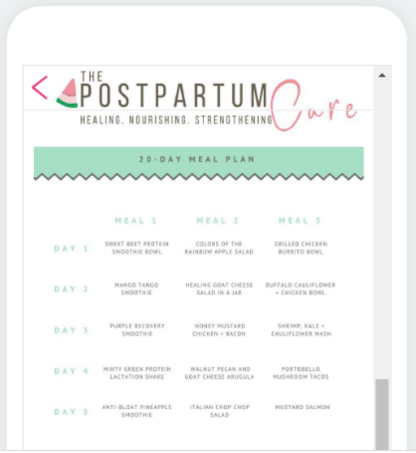 The Postpartum Cure screenshot 6